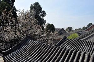 Dächer einer alten chinesischen Stadt im Frühling.